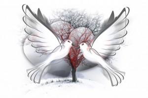 peace-dove-588991_640